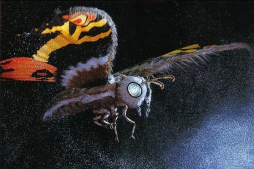 Mothra 1961 - Present